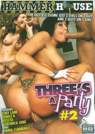 Threes A Party #2 Porn Movie