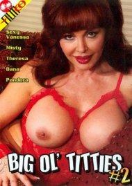 Big Ol Titties #2 Porn Video