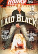 Laid Black Porn Video