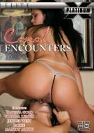 Casual Encounters Porn Video
