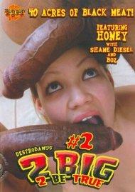 2 Big 2 Be True #2 Porn Video