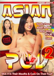 Asian POV 2 Porn Movie