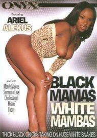 Black Mamas White Mambas Porn Movie