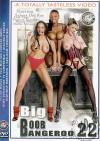 Big Boob Bangeroo 22 Porn Movie