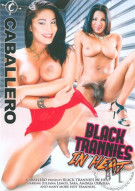 Black Trannies In Heat Porn Movie
