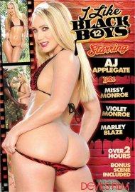 I Like Black Boys 12 Porn Movie