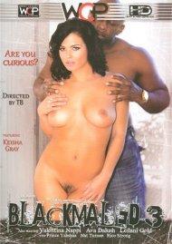 Blackmaled 3 Porn Movie