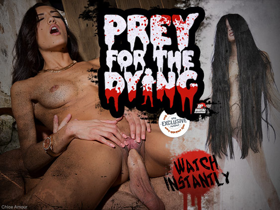 Watch Prey For the Dying Porn Movie on streaming video from Digital Playground.